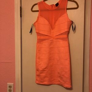 Bright pink/coral bodycon dress with mesh
